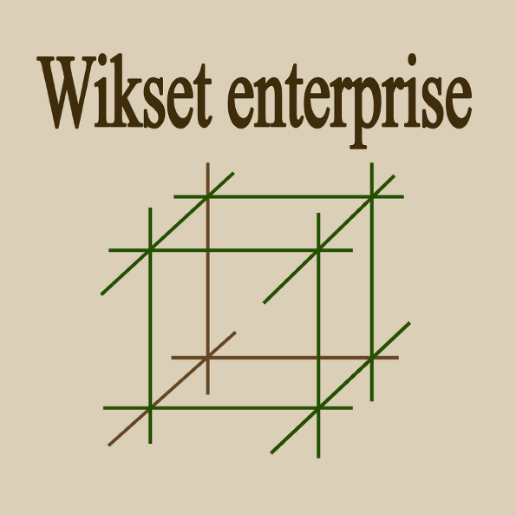 Wikset Enterprise T-shirt