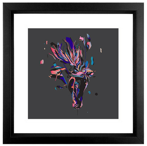 Veil Scans - Fine Art Print - Framed