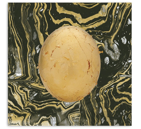 "Art - Danny Brown / Clams Casino 12"" Print"