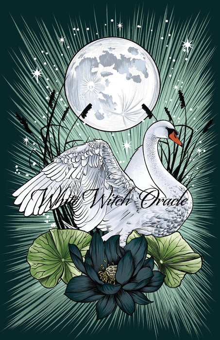 Wild Swan Greeting Card
