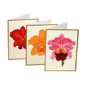 Assorted Orchids Boxed Note Cards - 6 Note Cards & 6 Envelopes - Maisonette Shop