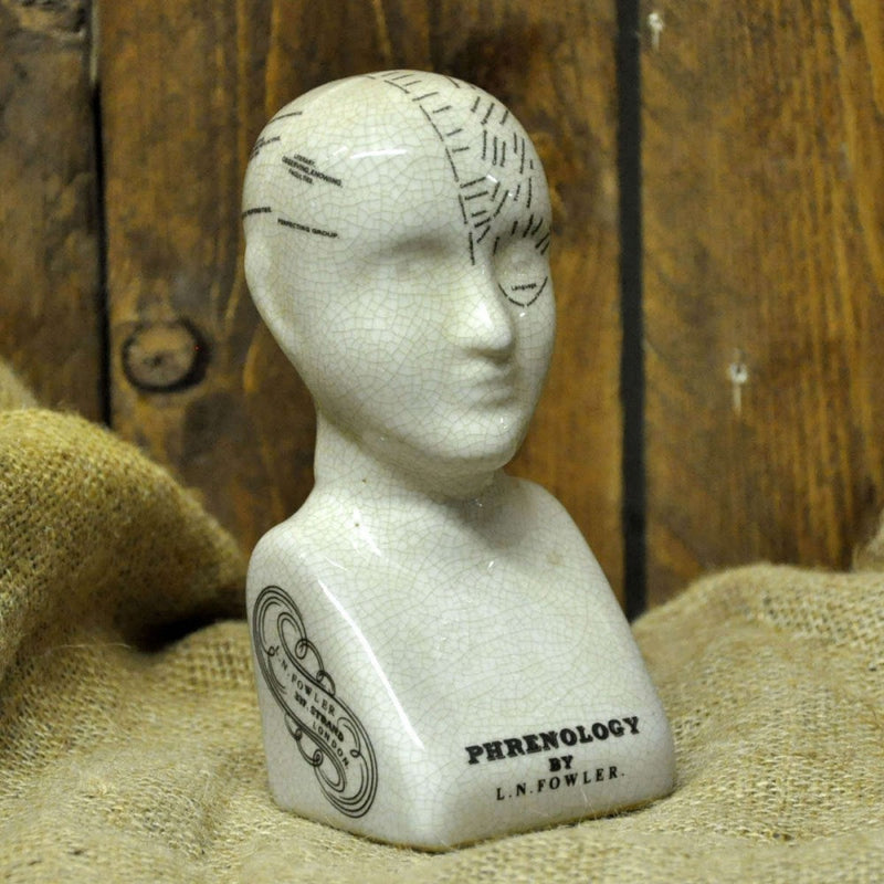 Ceramic Phrenology Head 17cm