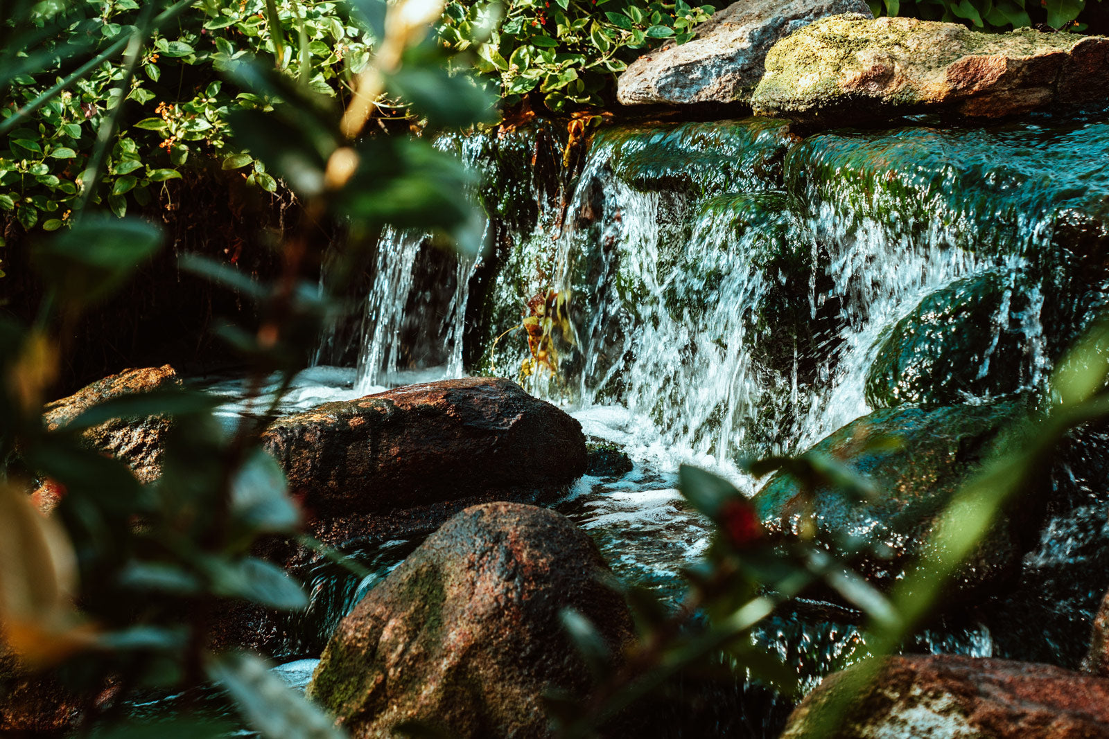 image of small green brook with waterfall in forest