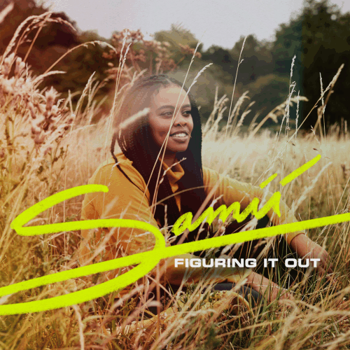 Samii ‎/ Figuring It Out