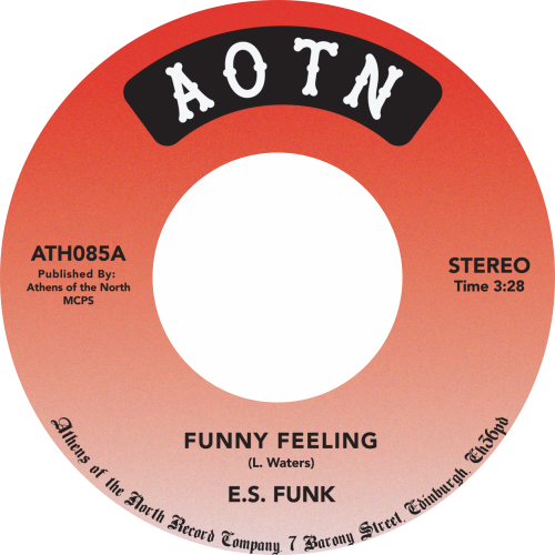 E.S. Funk ‎/ Funny Feeling / Shake Your Body (At The Disco)