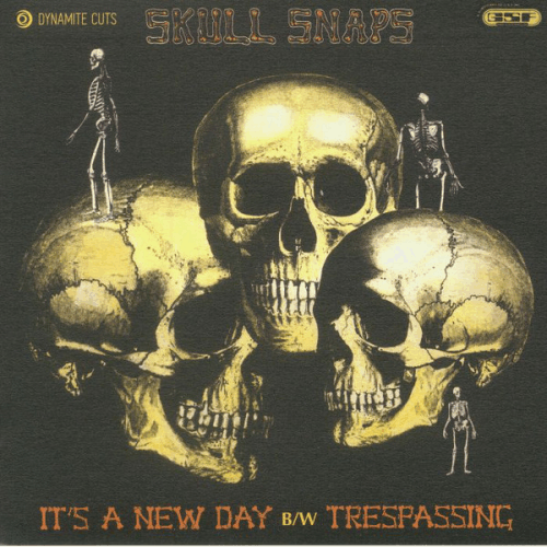 Skull Snaps ‎/ It's A New Day / Trespassing