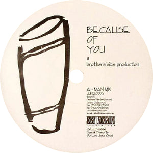 Brothers' Vibe ‎/ Because Of You