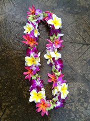 mixed double lei
