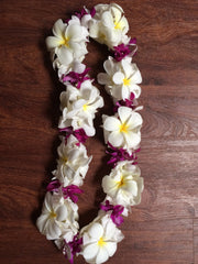 Double orchid and plumeria