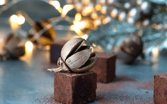 A Chocolate Meditation for Stress Relief and Gratitude
