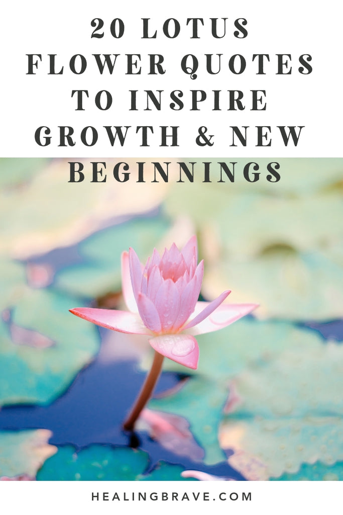 20 Lotus Flower Quotes to Inspire Growth & New Beginnings