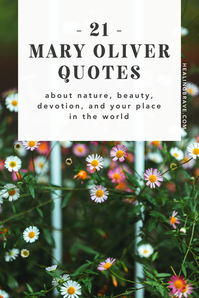Often called the most beloved poet in America, Mary Oliver was the first name I had in mind when I decided to read more poetry this year. Her deep sense of wonder, natural imagery, and simple language pulled me in; the solace I found in her words kept me there.