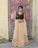 Beige colour lehenga with velvet blouse with embroidery work