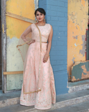 Blush pink net crop top with self colour zari work