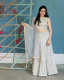 Sea green colout net croptop with self colour zari embroidery