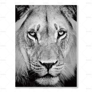 FULL HD Animals Art for Living Room