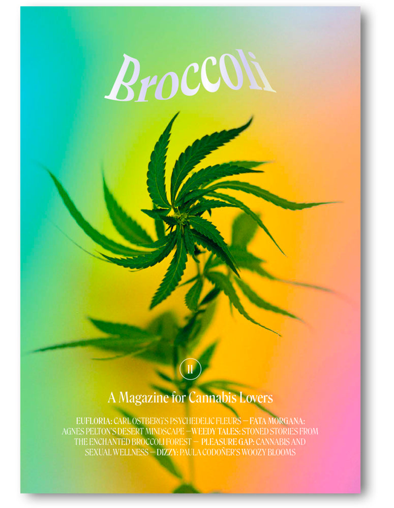 NEW! Broccoli Magazine Issue #11
