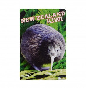Native NZ Birds - Kiwi