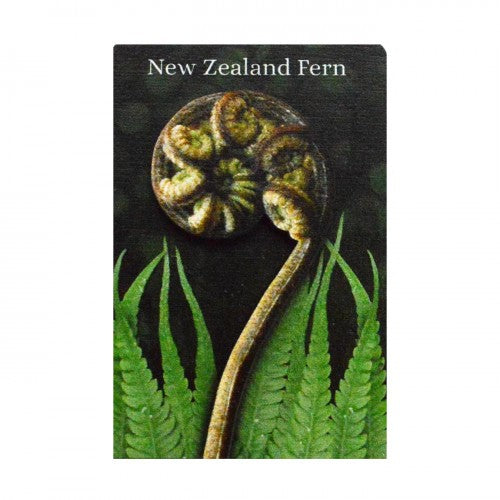 3D magnet- NZ Fern