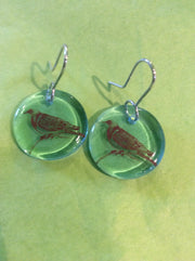 Glass Kereru disc earring