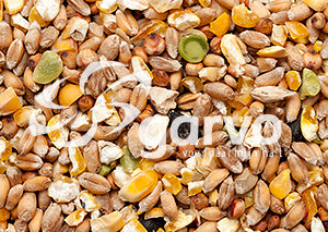 4133 Mixed Corn without Barley