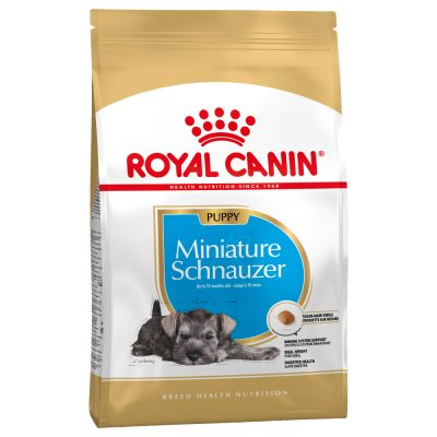 Royal canin Puppy Miniature Schnauzer - Creepy Critters