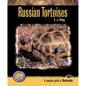 ECO Russian Tortoises in Captivity - Creepy Critters