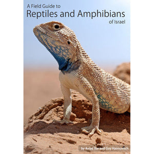 Reptiles & Amphibs. of Israel, Field Gde - Creepy Critters