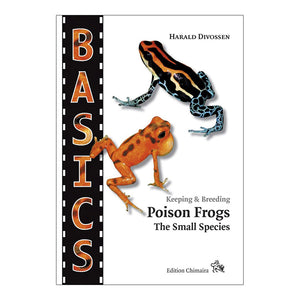 Chimaira Basics: Poison Frogs, the small species - Creepy Critters