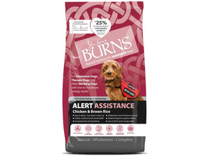 Burns Dog Working Alert Chicken