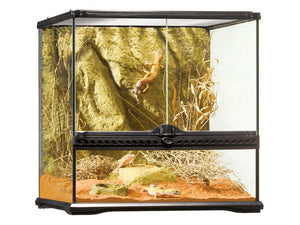 Exo Terra All Glass Vivarium