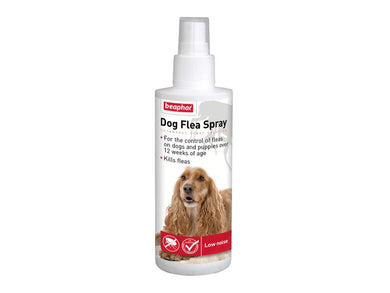 Dog Flea Spray 150ml - Creepy Critters