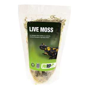 PR Live Moss, Small Bag (approx 1.5L) - Creepy Critters