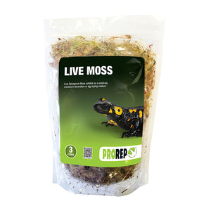 PR Live Moss, Large Bag (approx 3L) - Creepy Critters