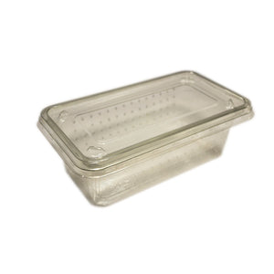 PL Cricket Tub/Lid, Vent Holes, pack 10 - Creepy Critters
