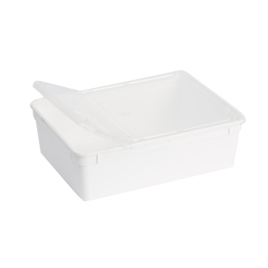 Travel BraPlast Box 3.0L White + Lid BP-30W - Creepy Critters