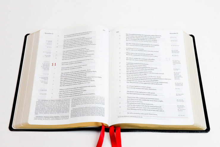 The NKJV Messenger Study Bible - Oynx