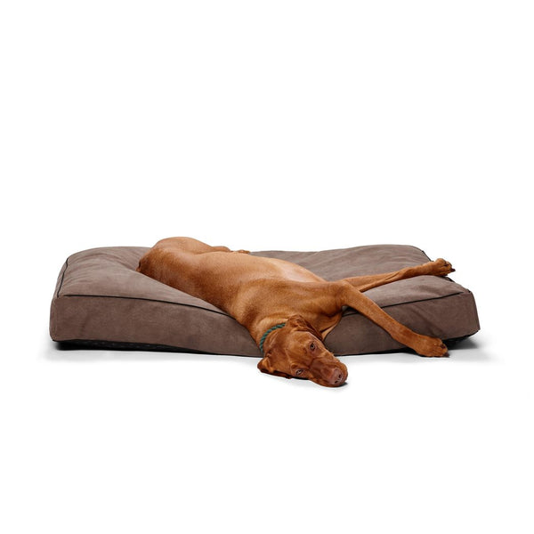 Shapes Oblong Pillow - Dog Beds For You