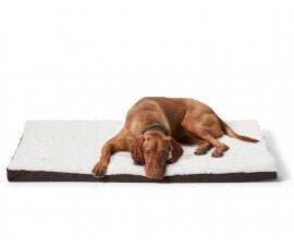 Orthopedic Dog Mats - Dog Beds For You