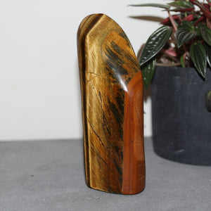 Tigers Eye Sculpture