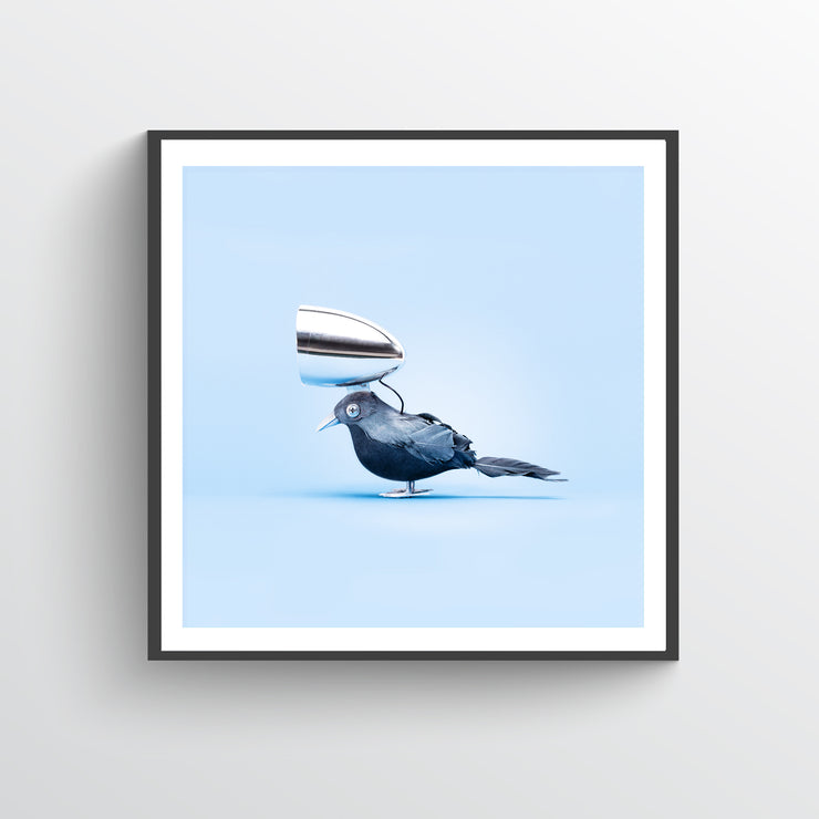 Noisy Bird - Art Print