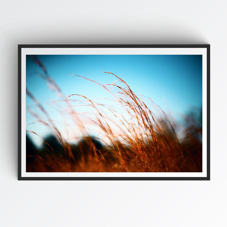 Wind That Shakes - Art Print