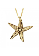 Load image into Gallery viewer, Sea Starfish Necklace