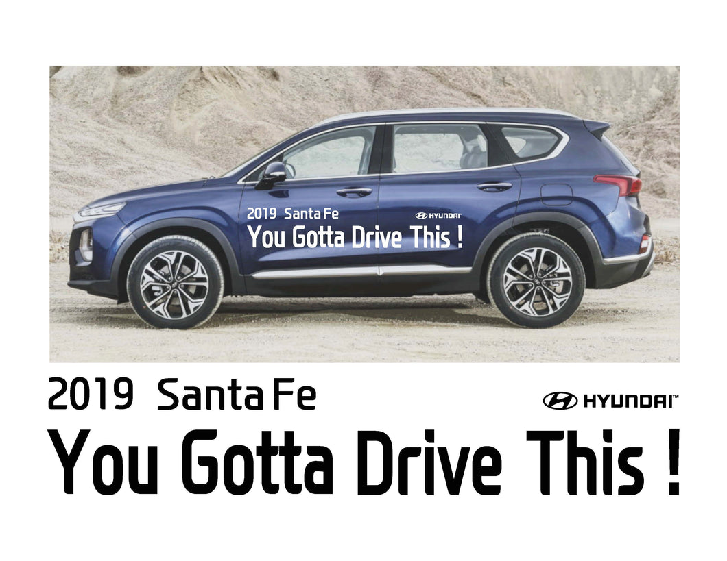 2019 Santa Fe - YOU GOTTA DRIVE THIS