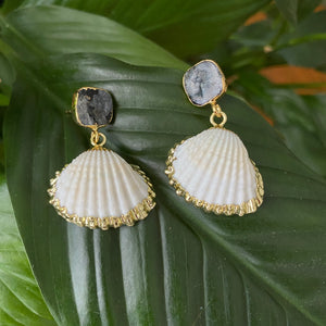 Labradorite Shell Earrings
