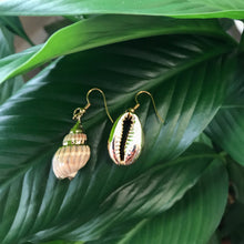 Load image into Gallery viewer, Snail and Cowrie Earrings