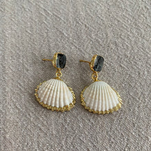 Load image into Gallery viewer, Labradorite Shell Earrings