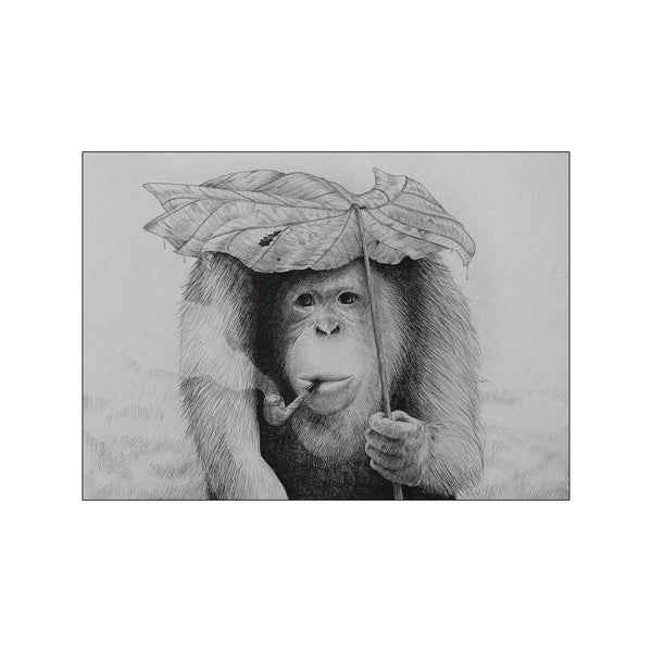 Orangutan smoking pipe