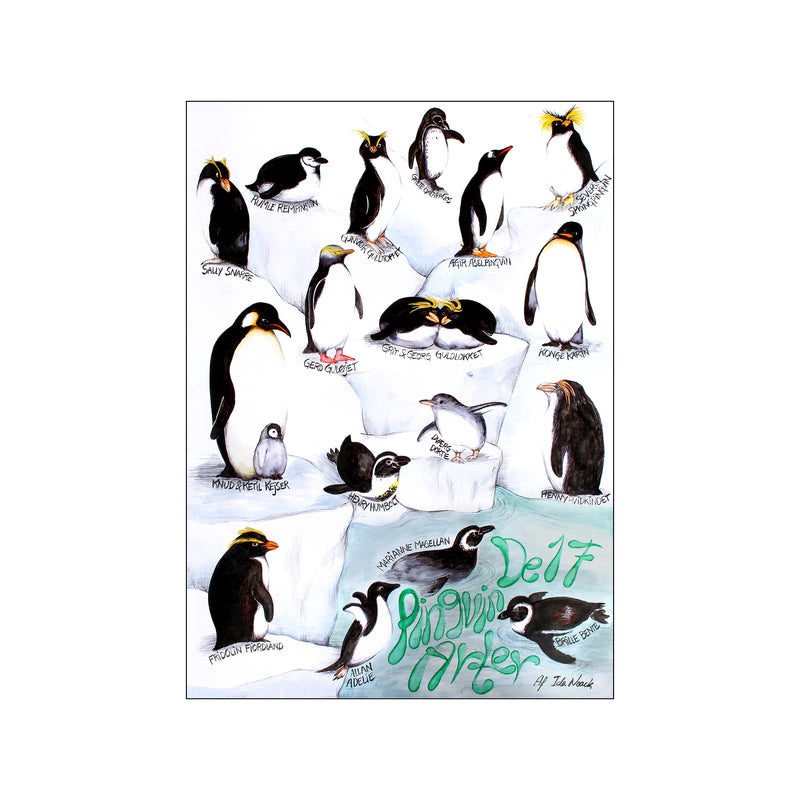 The 17 penguins