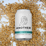 Another Dimension Pale Ale 0.5% - 12x 330ml Cans
